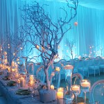 winterwedding-1
